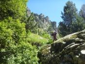 entorn gorgues de nuria (15)