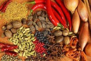 propiedades curativas y culinarias de plantas y frutos