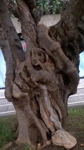 surrealismo sobre madera de olivos (4)