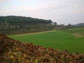 la garrotxa volcànica (Girona) (2)