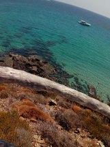 «cala Tortuga (Menorca)»