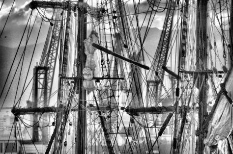 enredo (fotografía realizada en el puerto de Málaga por Tonio1967) -derechos reservados-